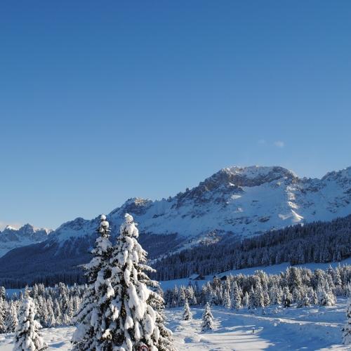 Neve Val di cembra Trentino