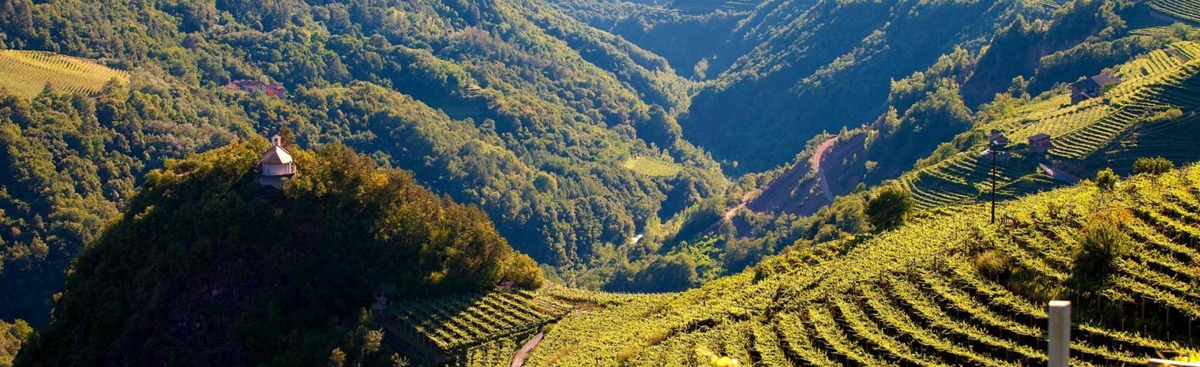 Le tue vacanze estate in Trentino all'Hotel Tirol