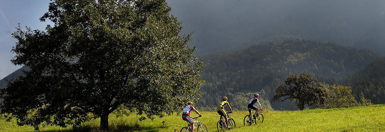 Itinerari naturalistici all'Hotel Tirol, in Trentino